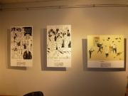 promocja-i-wystawa-006